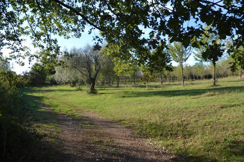 Sutri tenutella panoramica con progetto approvato sutri for Immobiliare affitto ufficio roma
