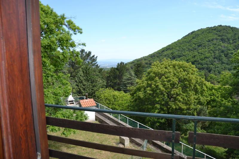 Viterbo bagnaia appartamento con giardino viterbo fz590 for Immobiliare affitto ufficio roma